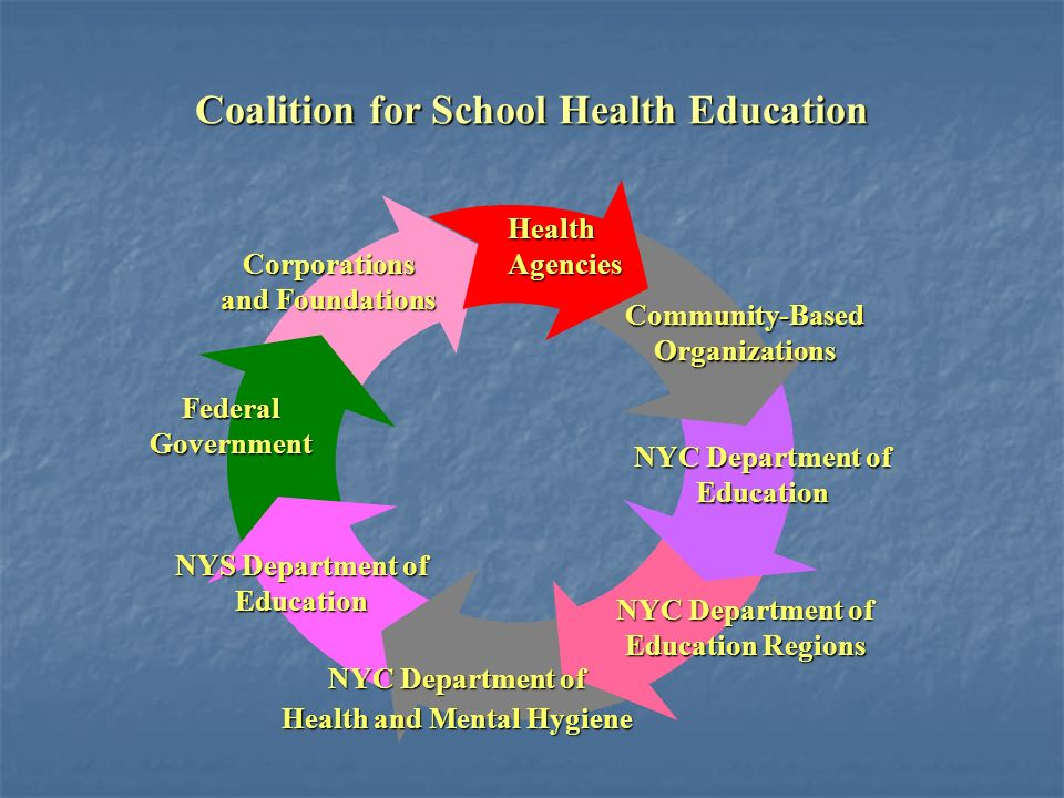 Corporations and Foundations NYC Department of Education FederalGovernment Health and Mental Hygiene Community-Based Organizations NYC Department of Education Regions NYS Department of Education Coalition for School Health Education Health Agencies