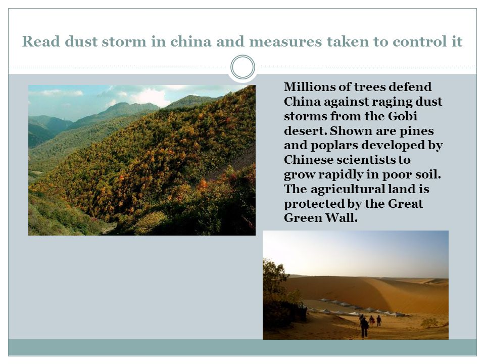 Read dust storm in china and measures taken to control it Millions of trees defend China against raging dust storms from the Gobi desert.