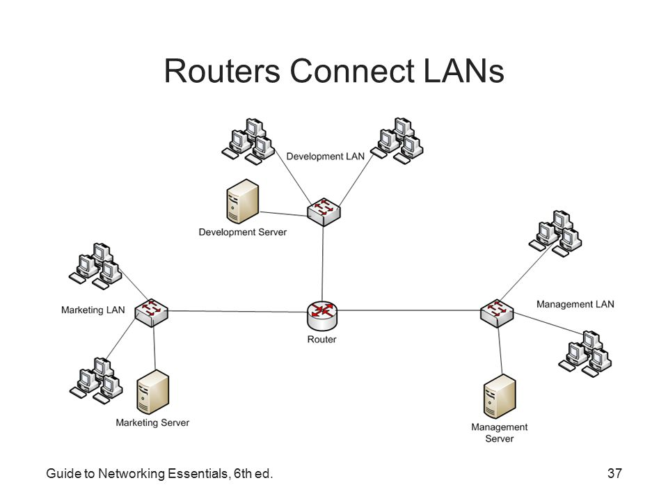 lane in networking