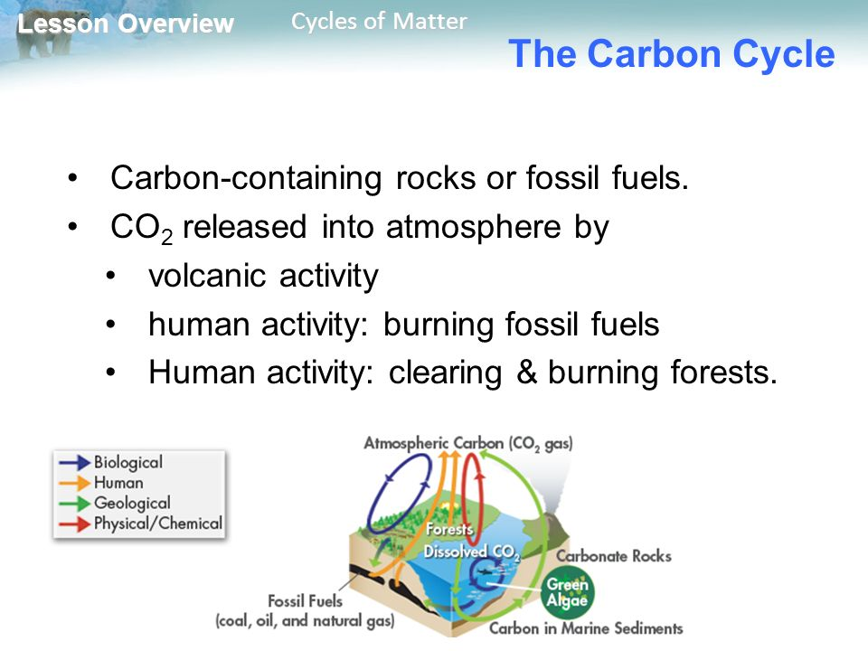 Lesson Overview Lesson Overview Cycles of Matter The Carbon Cycle Carbon-containing rocks or fossil fuels.
