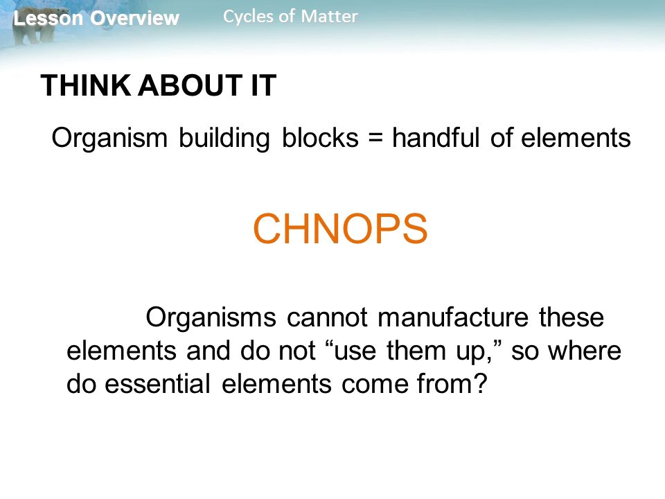 Lesson Overview Lesson Overview Cycles of Matter THINK ABOUT IT Organism building blocks = handful of elements CHNOPS Organisms cannot manufacture these elements and do not use them up, so where do essential elements come from