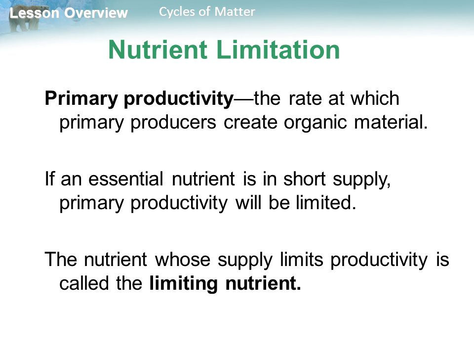 Lesson Overview Lesson Overview Cycles of Matter Nutrient Limitation Primary productivity—the rate at which primary producers create organic material.