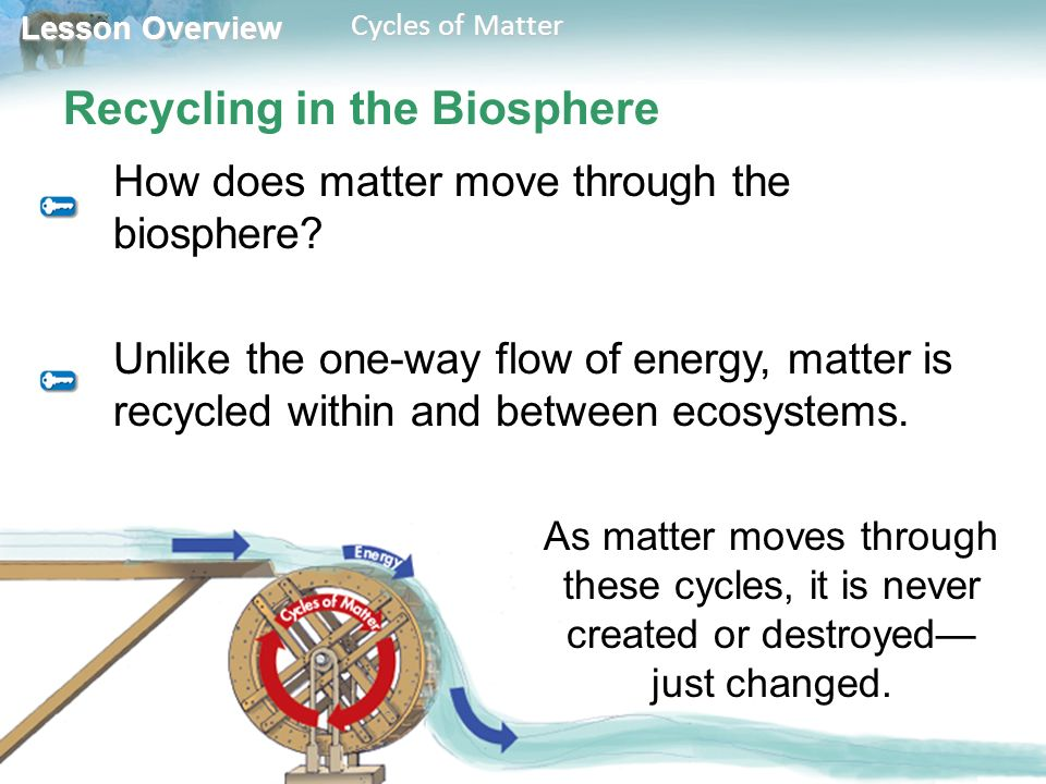 Lesson Overview Lesson Overview Cycles of Matter Recycling in the Biosphere How does matter move through the biosphere.