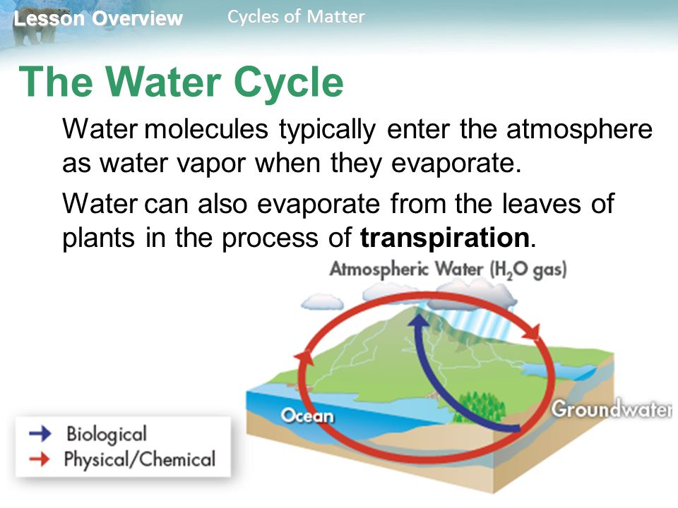 Lesson Overview Lesson Overview Cycles of Matter The Water Cycle Water molecules typically enter the atmosphere as water vapor when they evaporate.