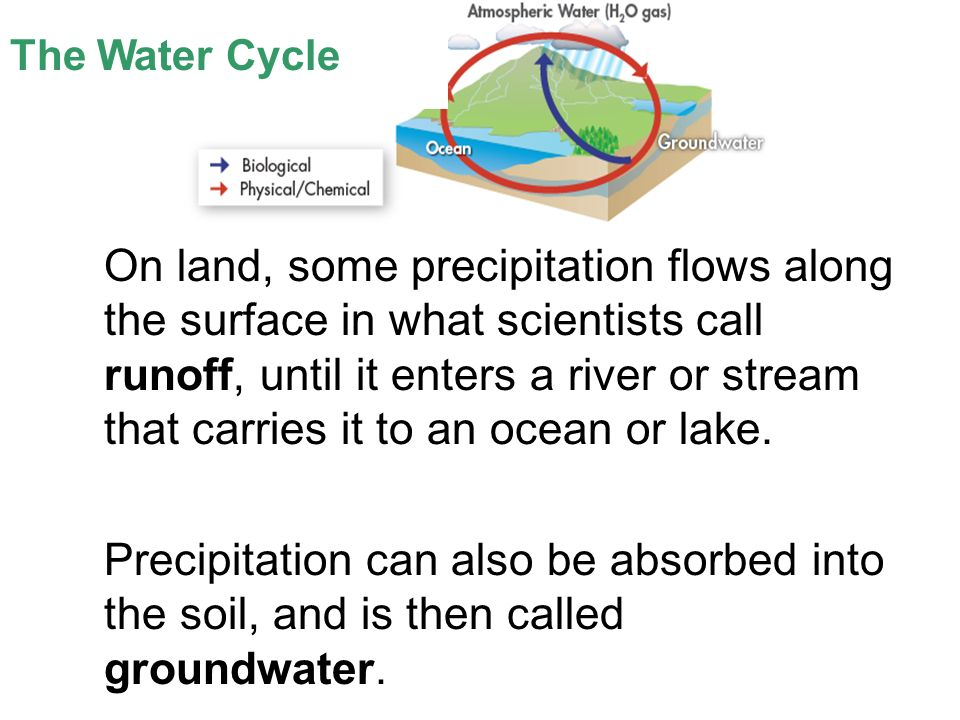 Lesson Overview Lesson Overview Cycles of Matter The Water Cycle On land, some precipitation flows along the surface in what scientists call runoff, until it enters a river or stream that carries it to an ocean or lake.