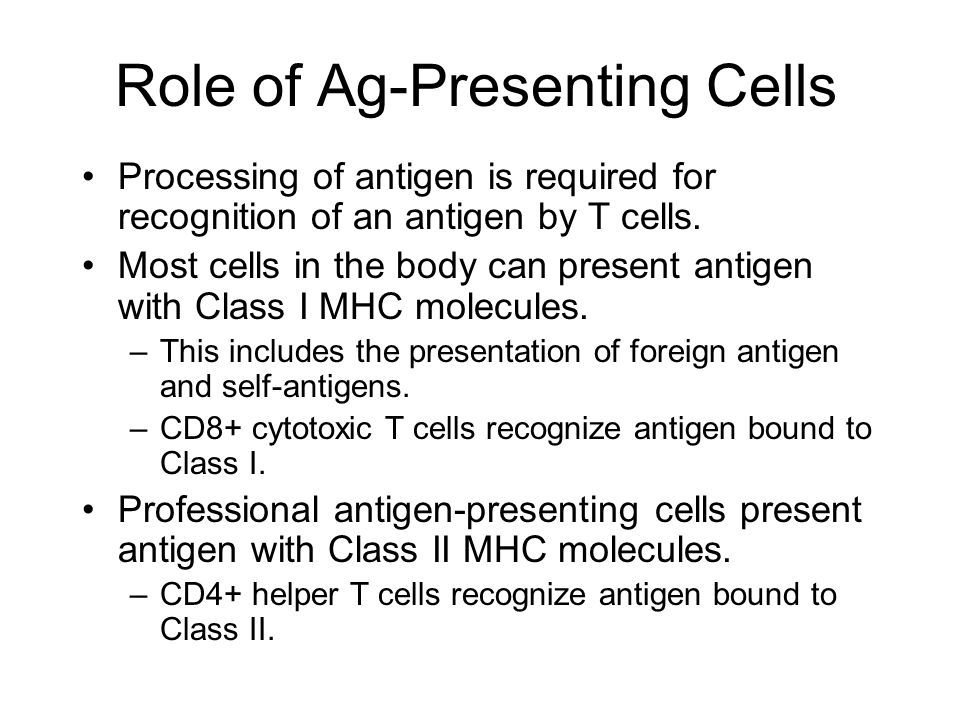 Cd74 antigen presentation and t-cell