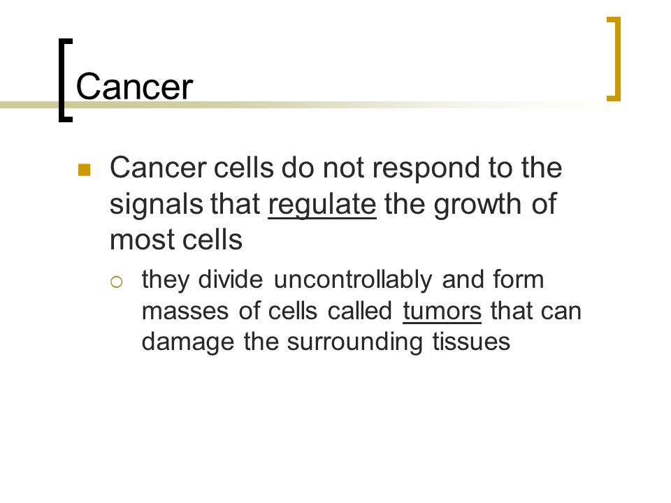Cancer Cancer cells do not respond to the signals that regulate the growth of most cells  they divide uncontrollably and form masses of cells called tumors that can damage the surrounding tissues