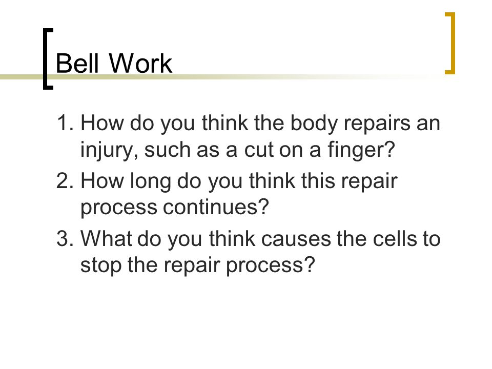 Bell Work 1.How do you think the body repairs an injury, such as a cut on a finger.