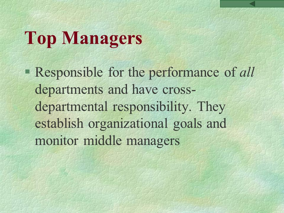 Top Managers §Responsible for the performance of all departments and have cross- departmental responsibility.