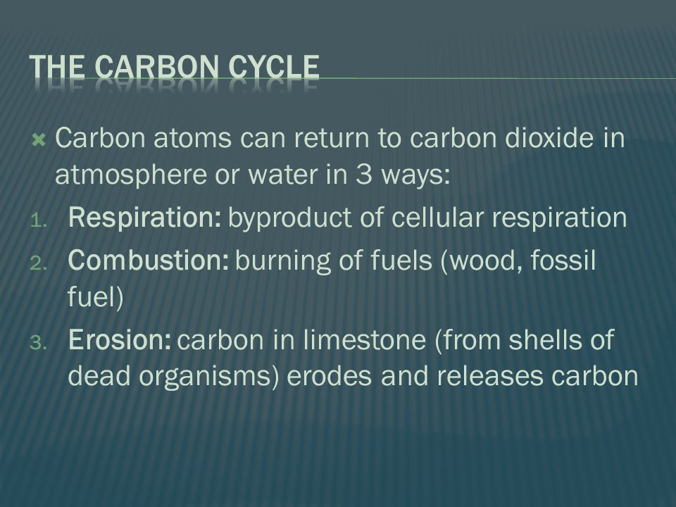  Carbon atoms can return to carbon dioxide in atmosphere or water in 3 ways: 1.