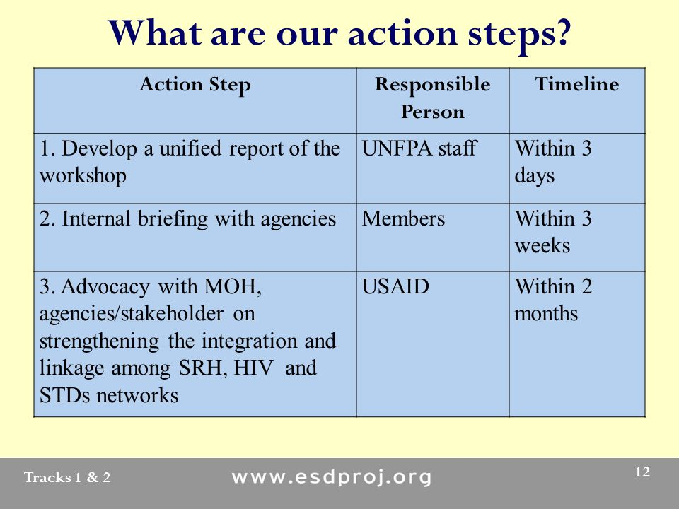 Tracks 1 & 2 12 What are our action steps. Action StepResponsible Person Timeline 1.