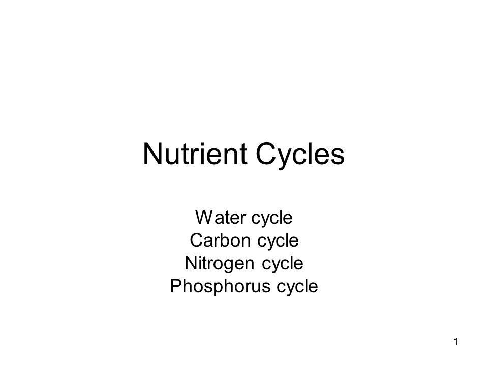 1 Nutrient Cycles Water cycle Carbon cycle Nitrogen cycle – Nutrient Cycle Worksheet