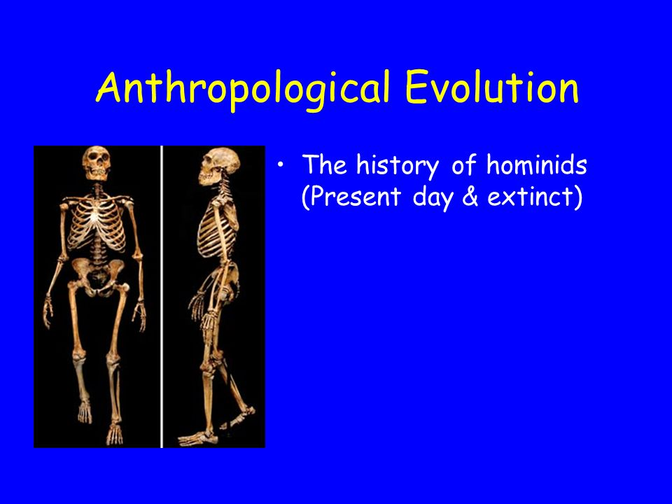 How do we learn from hominids. Experimentation * Physiological Science 1.