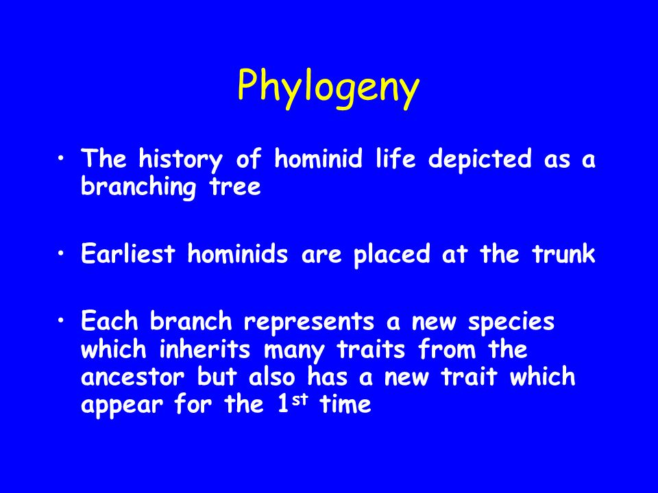 Anthropological Evolution The history of hominids (Present day & extinct)