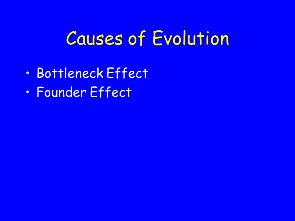 Causes of Evolution 3.