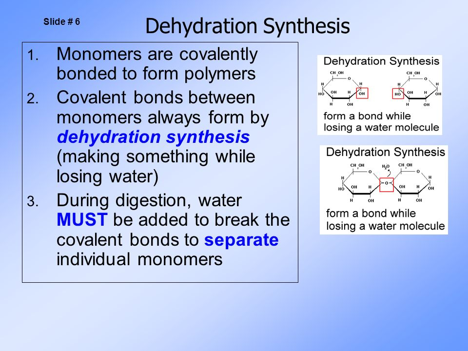 Dehydration Synthesis 1. Monomers are covalently bonded to form polymers 2.