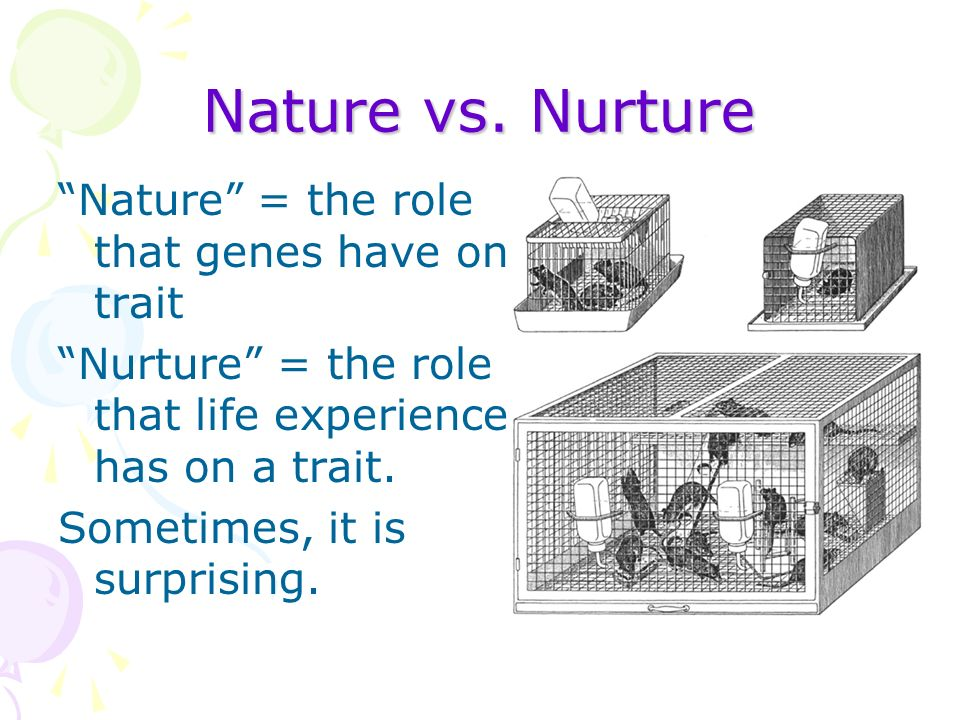 nature vs nurture in child development essay