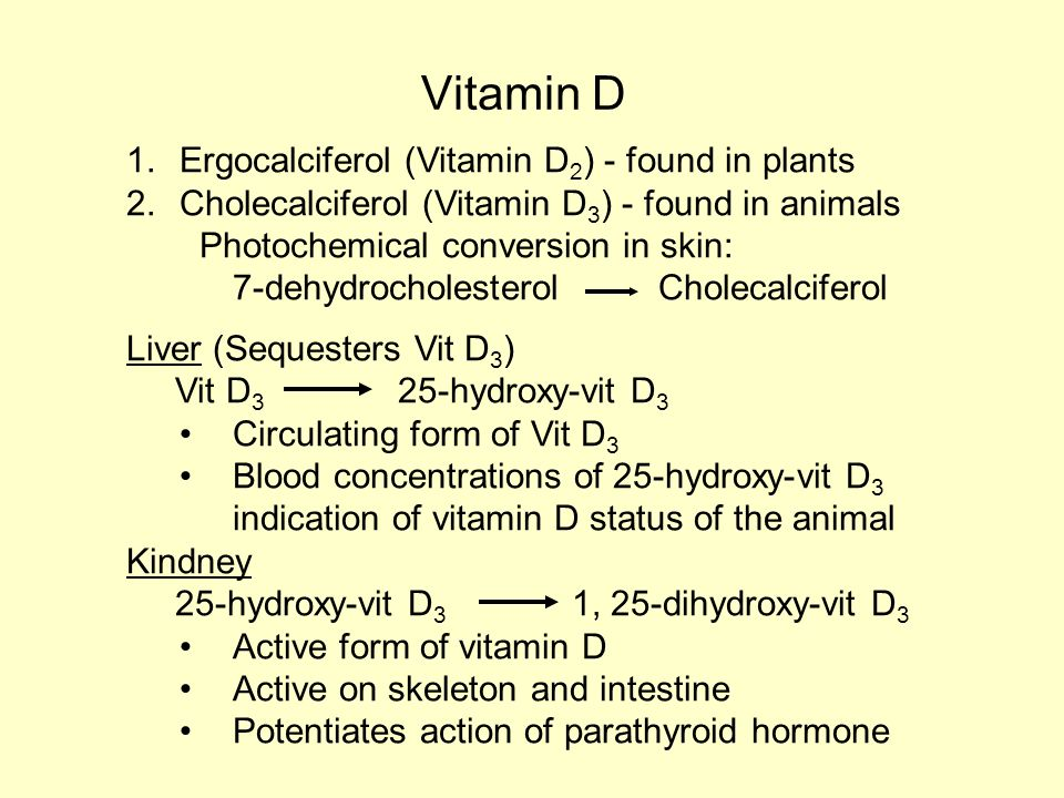 Vitamins Ruminants Fat soluble Vitamins A, D, E and K Water ...