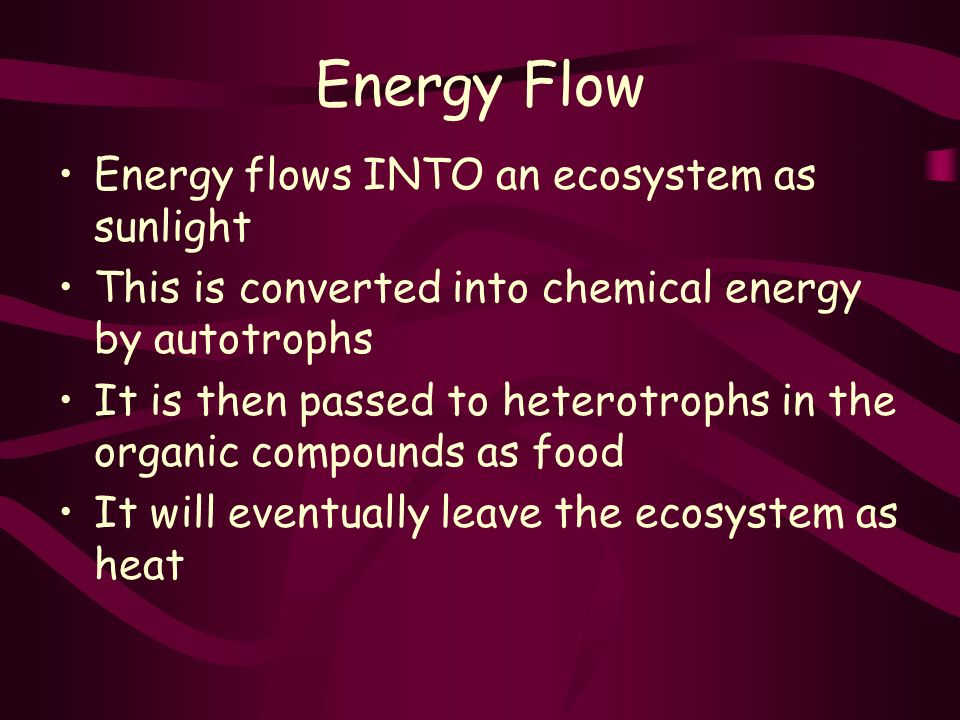 Energy Flow Energy flows INTO an ecosystem as sunlight This is converted into chemical energy by autotrophs It is then passed to heterotrophs in the organic compounds as food It will eventually leave the ecosystem as heat
