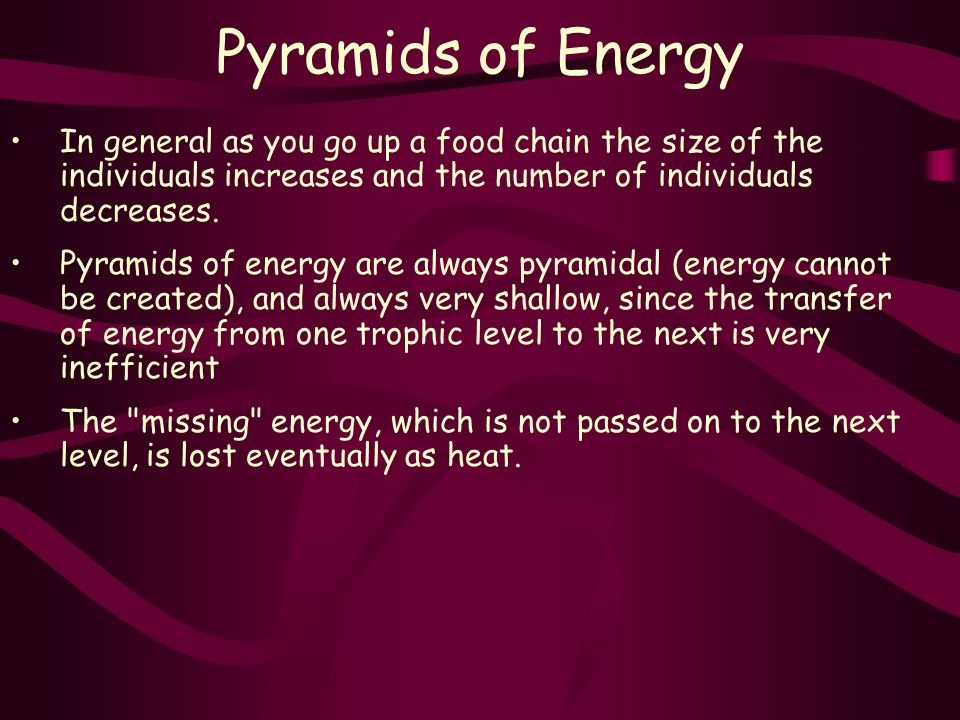 Pyramids of Energy In general as you go up a food chain the size of the individuals increases and the number of individuals decreases.