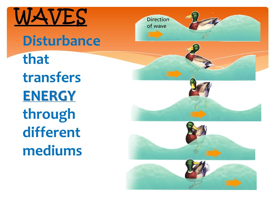 ENERGY  Disturbance that transfers ENERGY through different mediums WAVES