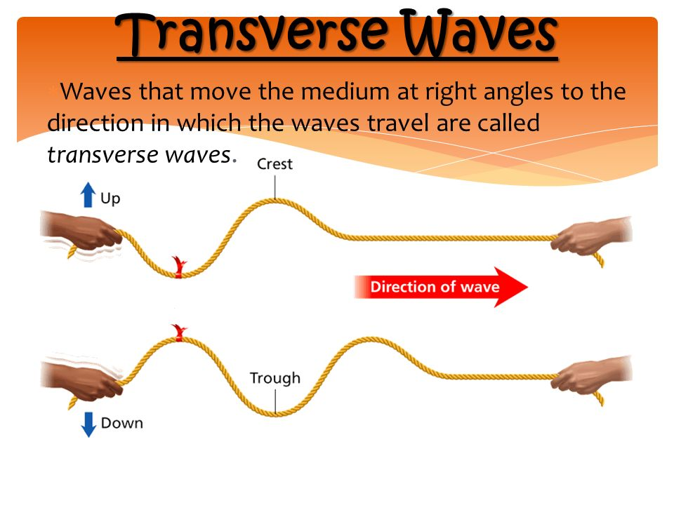 Transverse Waves  Waves that move the medium at right angles to the direction in which the waves travel are called transverse waves.
