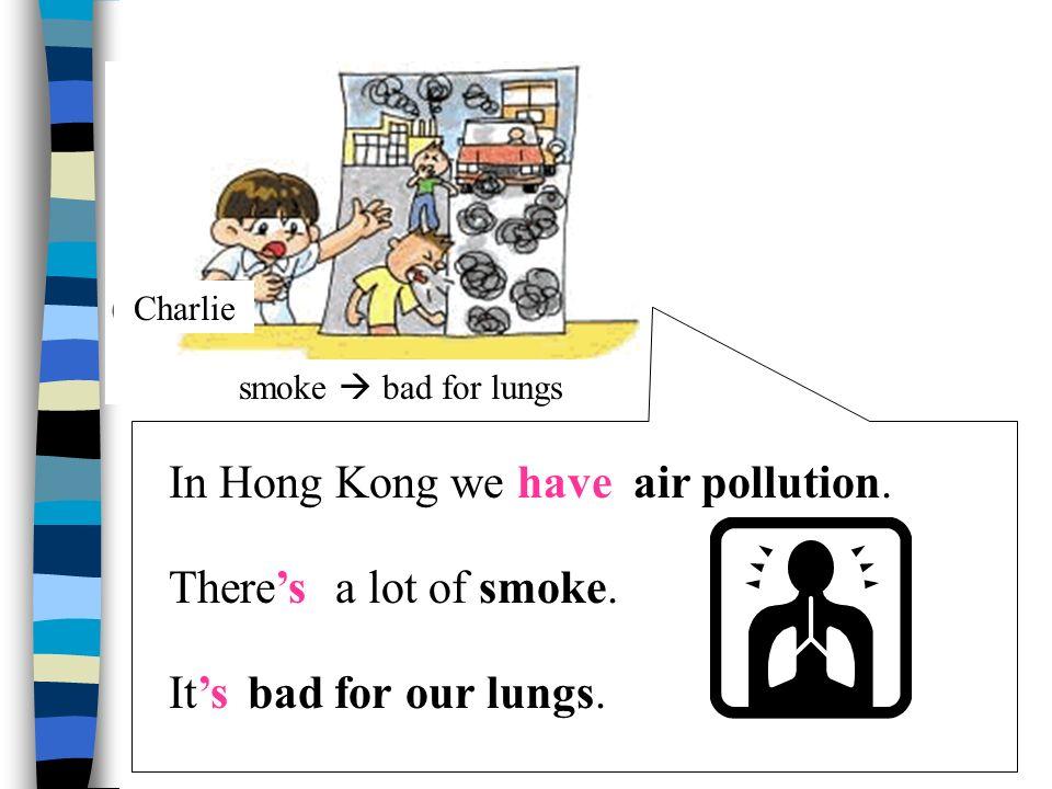 In Hong Kong we haveland pollution. There'sa lot of rubbish.