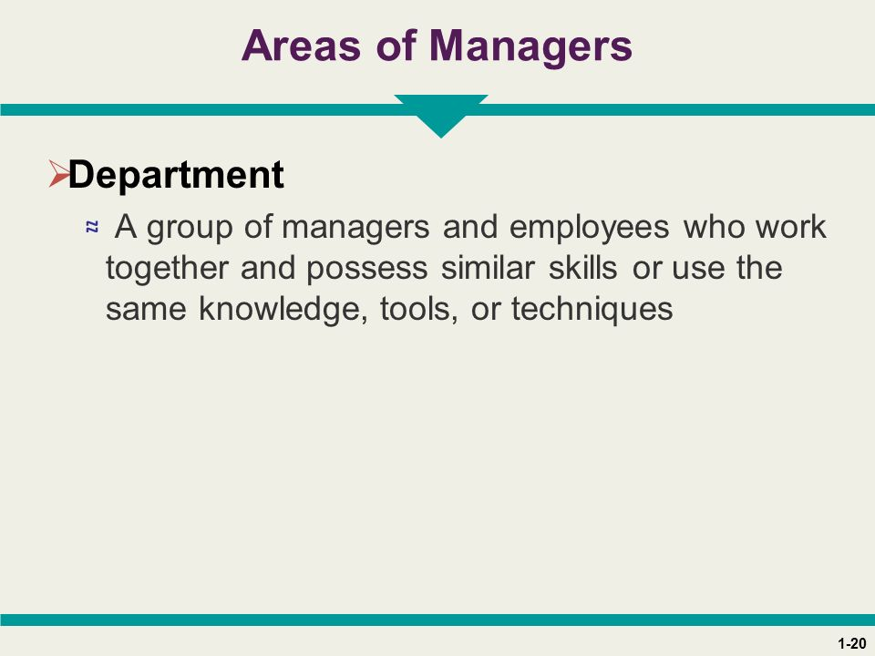 1-20 Areas of Managers  Department ≈ A group of managers and employees who work together and possess similar skills or use the same knowledge, tools, or techniques