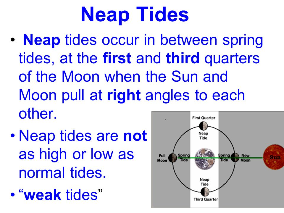 Neap Tides Neap tides occur in between spring tides, at the first and third quarters of the Moon when the Sun and Moon pull at right angles to each other.