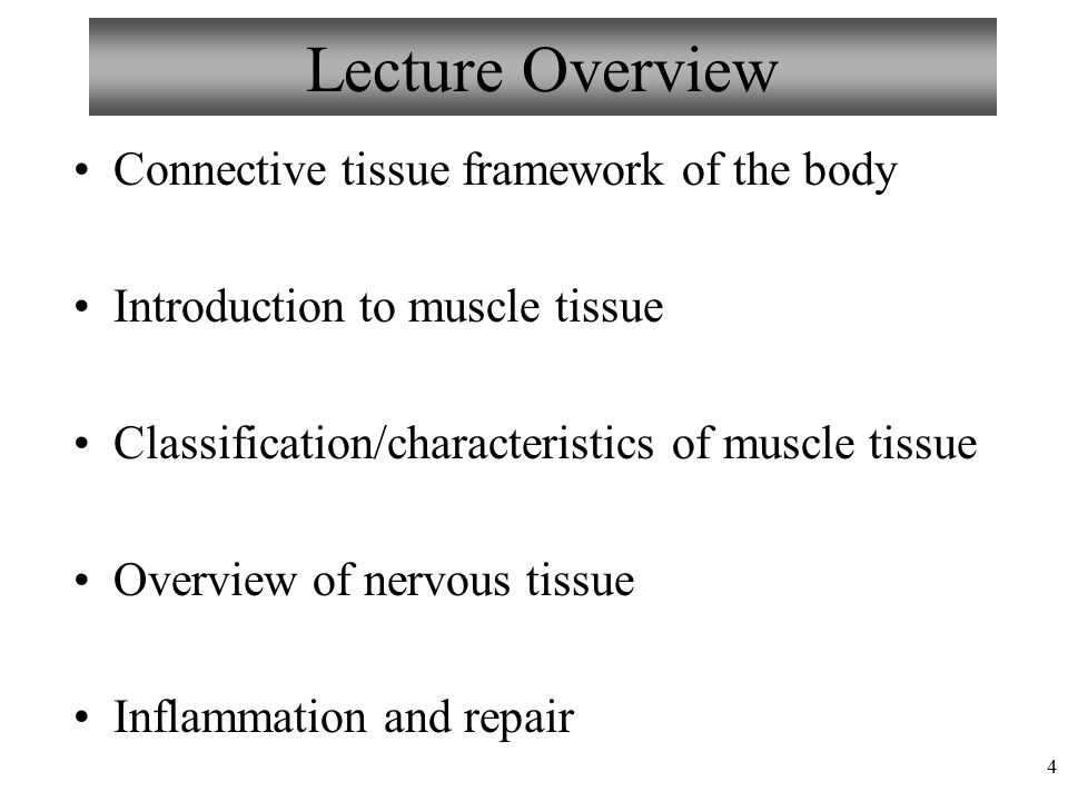 Ausgezeichnet Nervous Tissue Anatomy And Physiology Zeitgenössisch ...