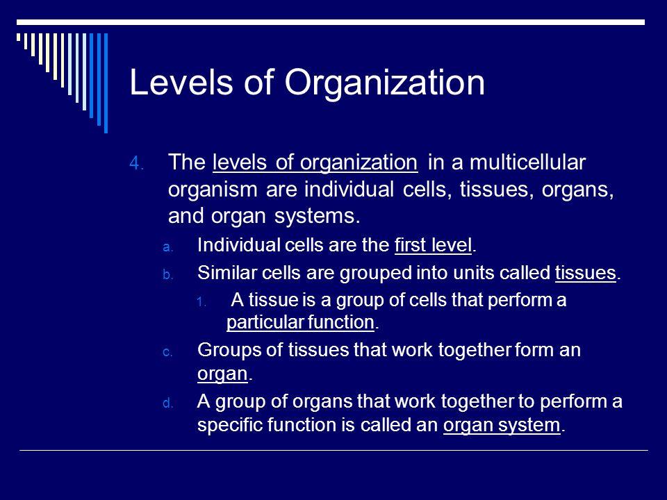 The Diversity of Cellular Life. Unicellular Organisms 1. An ...