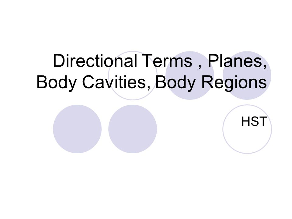 Directional Terms Planes Body Cavities Body Regions HST ppt – Body Regions Worksheet