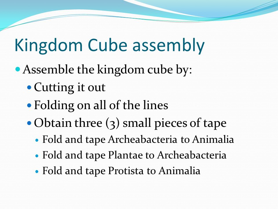Kingdom Cubes DO NOT CUT THE CUBE UNTIL IT IS FINISHED!.