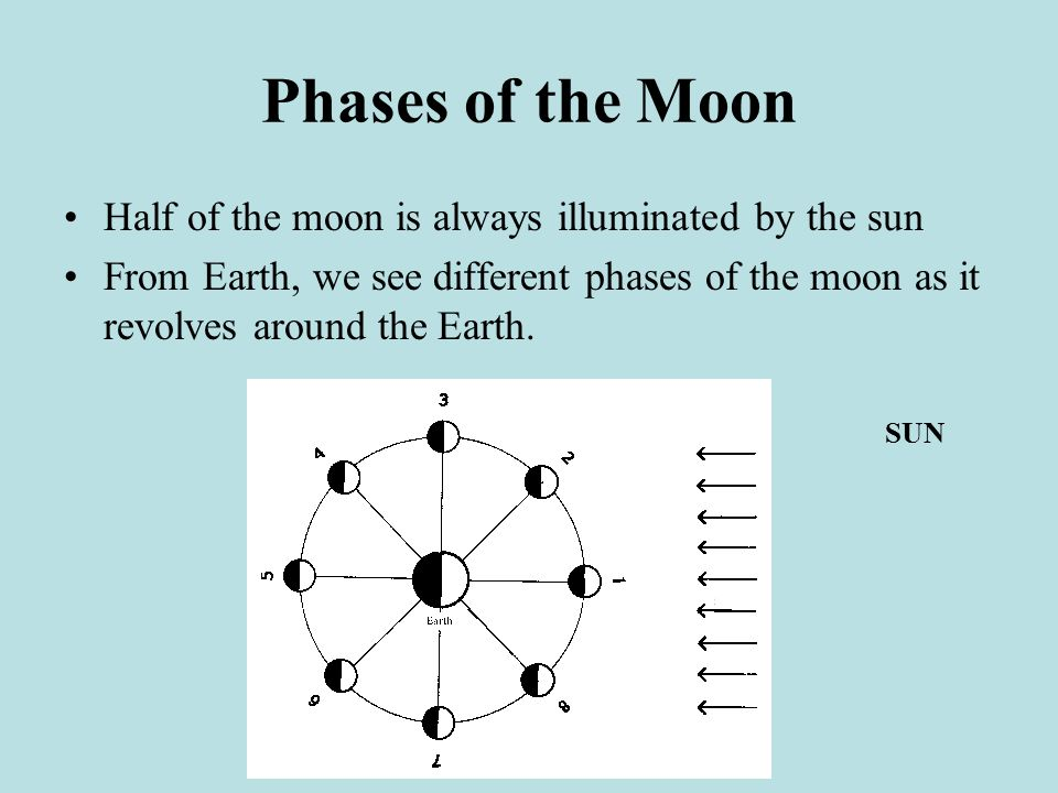 Phases of the Moon Half of the moon is always illuminated by the sun From Earth, we see different phases of the moon as it revolves around the Earth.