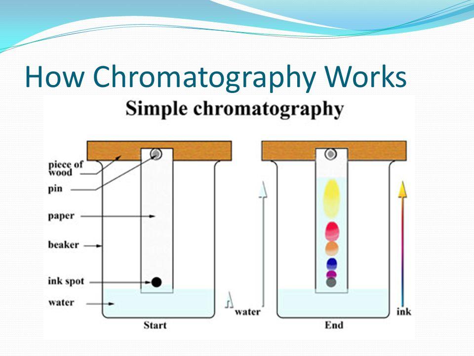 Paper Chromatography How It Works Honghankk