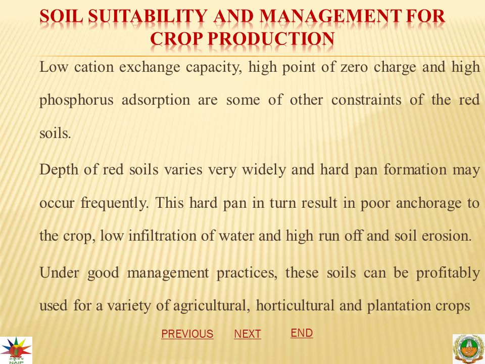 Low cation exchange capacity, high point of zero charge and high phosphorus adsorption are some of other constraints of the red soils.
