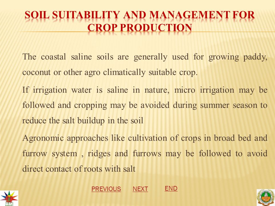 The coastal saline soils are generally used for growing paddy, coconut or other agro climatically suitable crop.