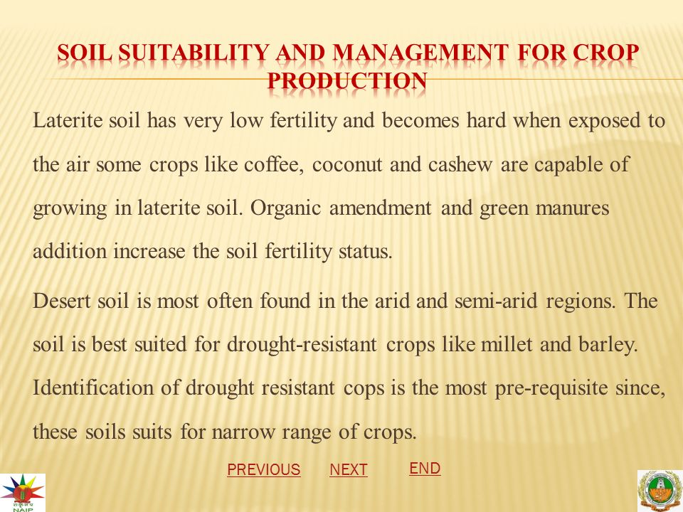 Laterite soil has very low fertility and becomes hard when exposed to the air some crops like coffee, coconut and cashew are capable of growing in laterite soil.