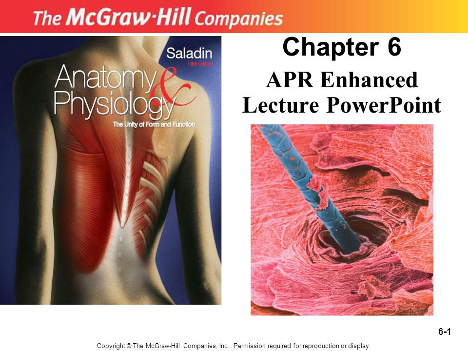Chapter 6 APR Enhanced Lecture PowerPoint Copyright © The McGraw ...