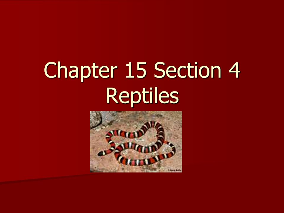 Chapter 15 Section 4 Reptiles. Standard; The anatomy and physiology ...