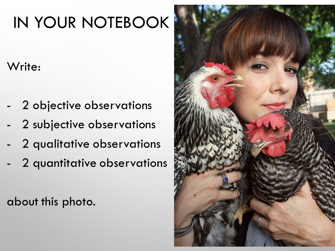 IN YOUR NOTEBOOK Write: - 2 objective observations - 2 subjective observations - 2 qualitative observations - 2 quantitative observations about this photo.
