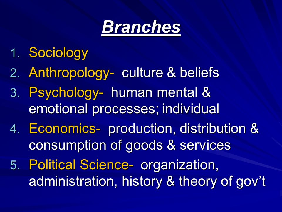 Branches 1. Sociology 2. Anthropology- culture & beliefs 3.