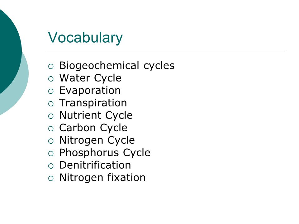 Vocabulary  Biogeochemical cycles  Water Cycle  Evaporation  Transpiration  Nutrient Cycle  Carbon Cycle  Nitrogen Cycle  Phosphorus Cycle  Denitrification  Nitrogen fixation