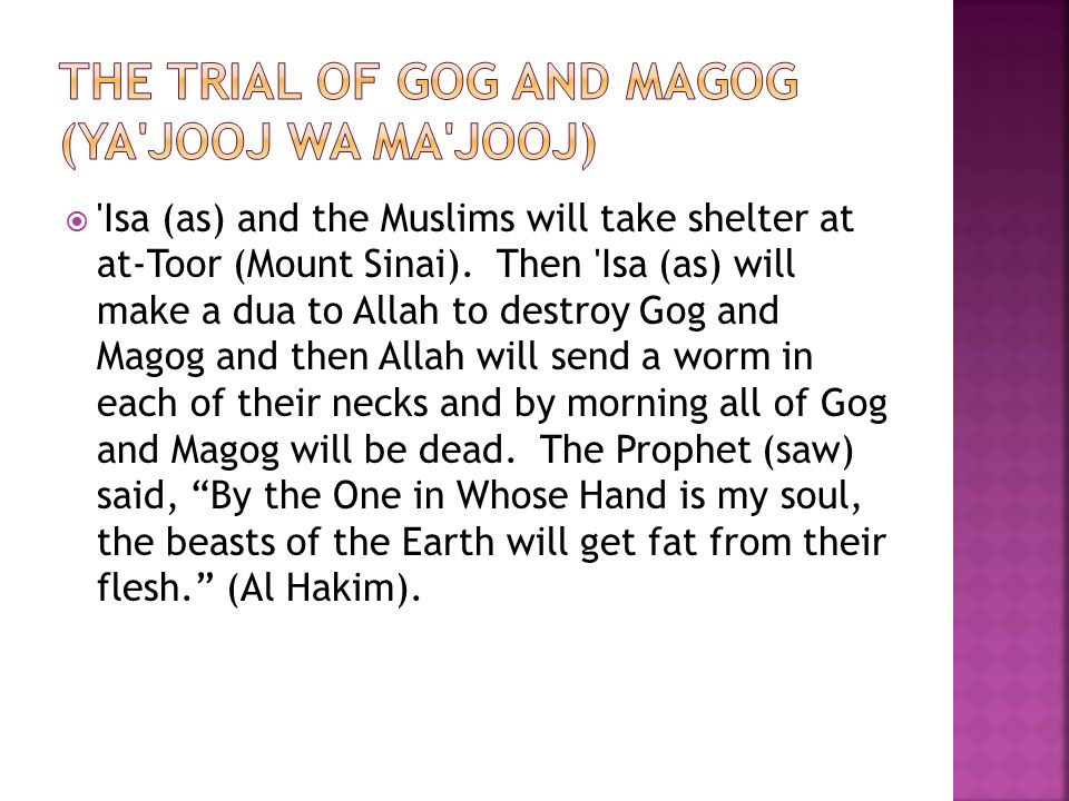  Isa (as) and the Muslims will take shelter at at-Toor (Mount Sinai).