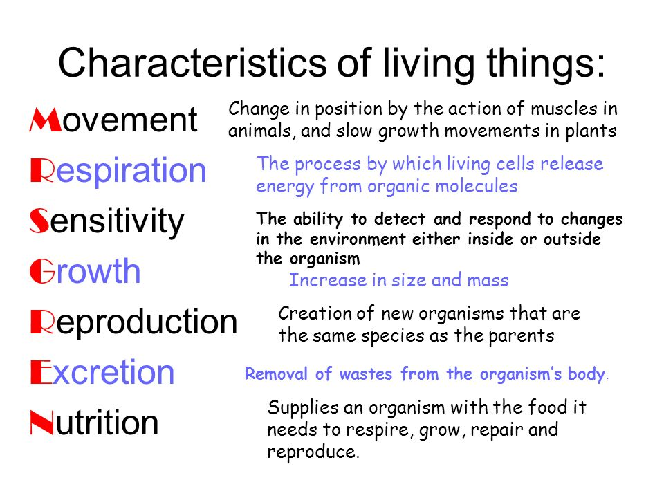 Characteristics of living things: M ovement R espiration S ensitivity G rowth R eproduction E