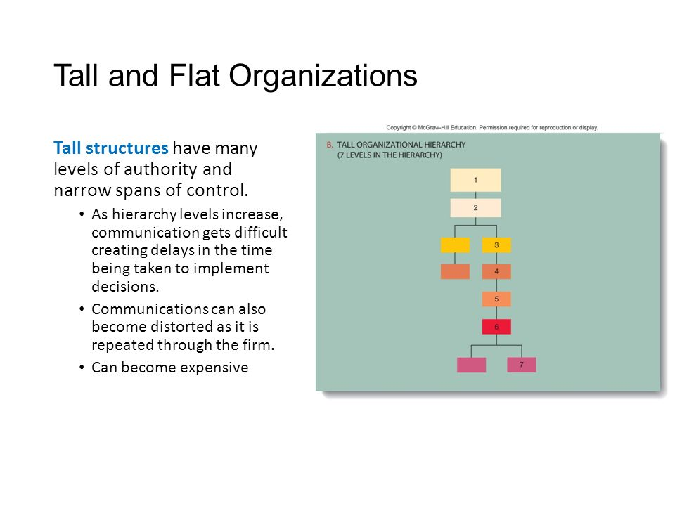 Tall and Flat Organizations Tall structures have many levels of authority and narrow spans of control.