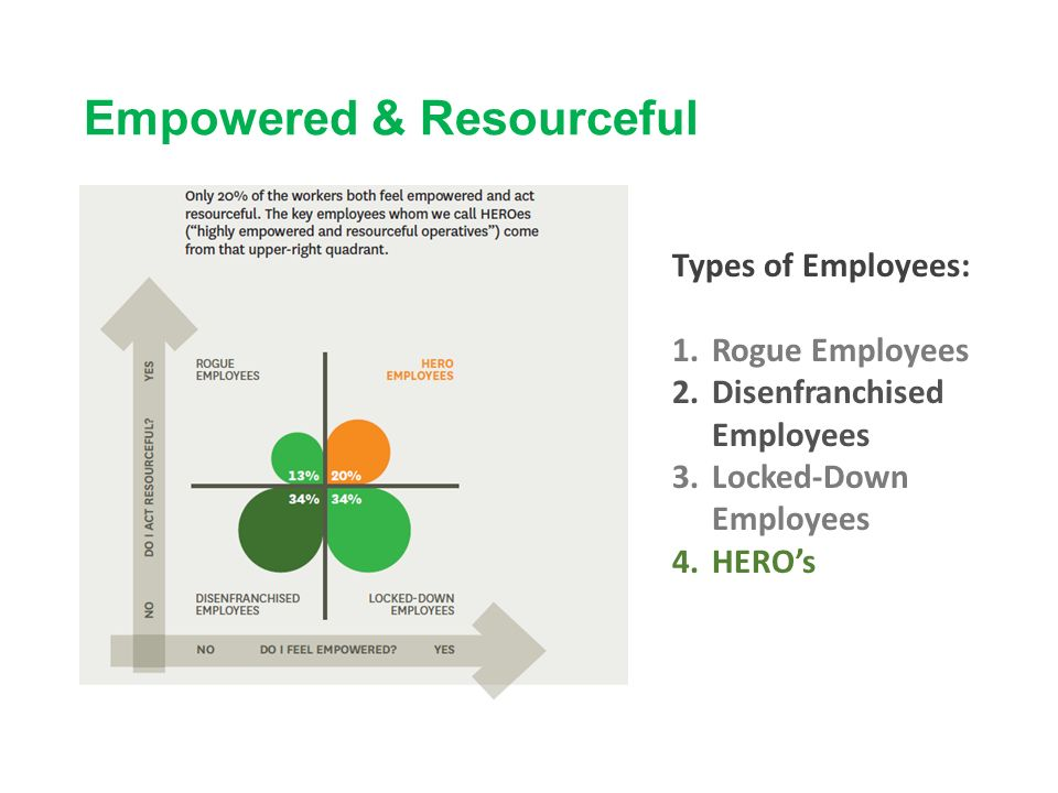 Empowered & Resourceful Types of Employees: 1.Rogue Employees 2.Disenfranchised Employees 3.Locked-Down Employees 4.HERO's