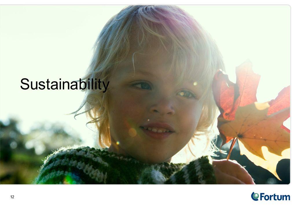 12 Sustainability 12