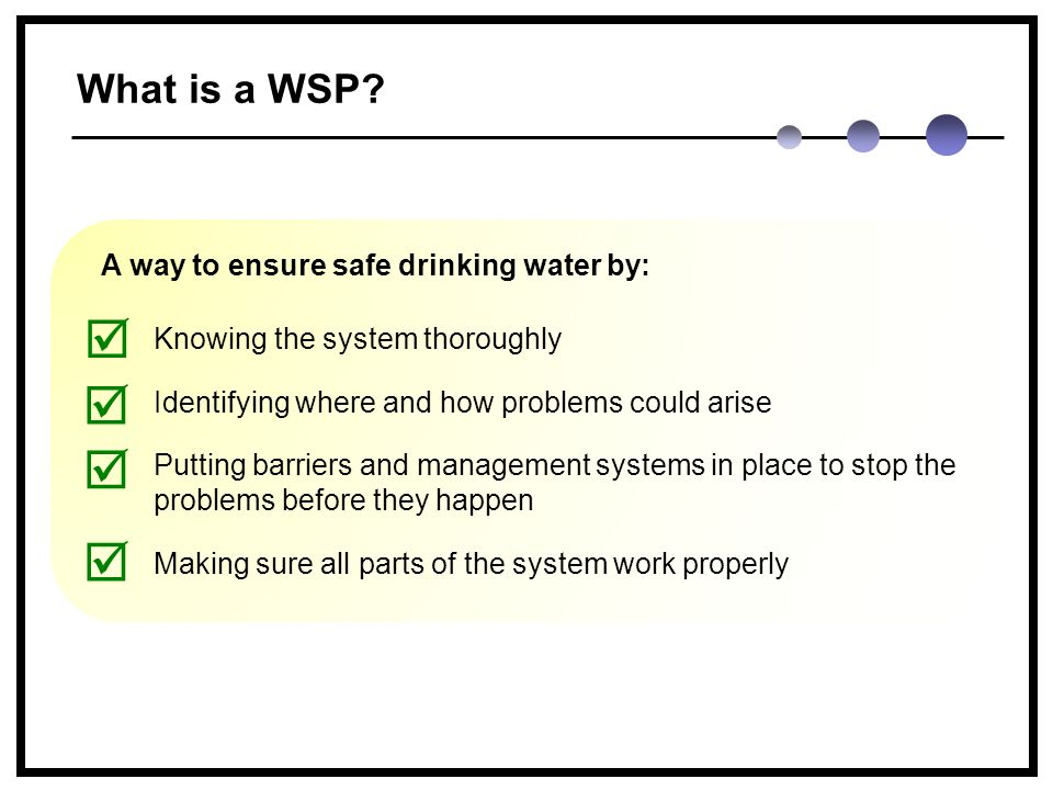 What is a WSP.