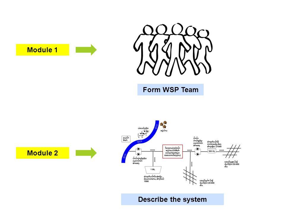 Module 2 Module 1 Form WSP Team Describe the system